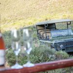 Game Drives @ Melozhori Private Game Reserve
